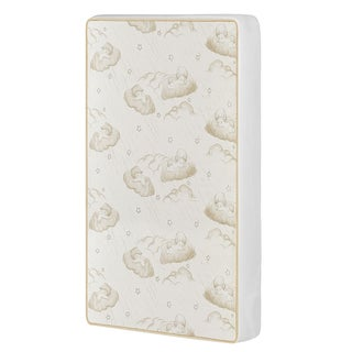 23 Dream On Me 2-In-1 Breathable Two-Sided Portable/MINI Crib Coil Mattress.