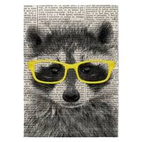 Kavka Designs Racoon In Yellow Glasses Yellow/ Black/ White Area Rug - 8'x10'