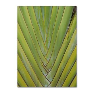 Patty Tuggle 'Palm 4' Canvas Art