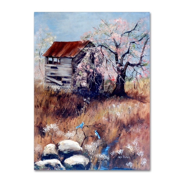 Arie Reinhardt Taylor 'The Old Tater House' Canvas Art