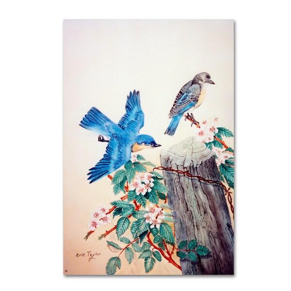 Arie Reinhardt Taylor 'Bluebirds' Canvas Art