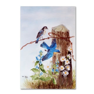 Arie Reinhardt Taylor 'Bluebirds And Daisies' Canvas Art