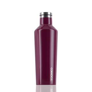Corkcicle Canteen Water Bottle and Thermos