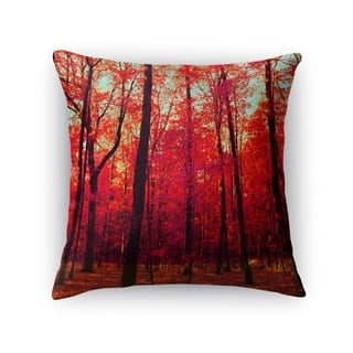 Size 24 X 24 Throw Pillows For Less Overstock Com