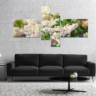 Designart 'Beautiful Blooming White Flowers' Floral Canvas Art Print