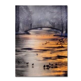 Cristian Andreescu 'Frozen Lake' Canvas Art