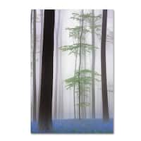 Piet Haaksma 'Foggy Forest ' Canvas Art