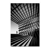 Paulo Abrantes 'Drifting' Canvas Art