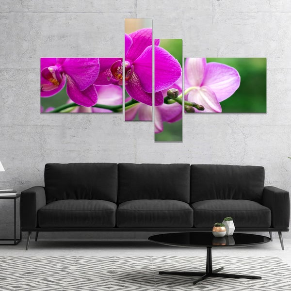 Designart 'Beautiful Orchid Flowers on Green' Floral Canvas Art Print - Green