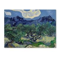 Van Gogh 'The Olive Trees' Canvas Art