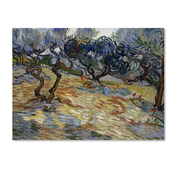 Shop Van Gogh Olive Trees Canvas Art On Sale Free