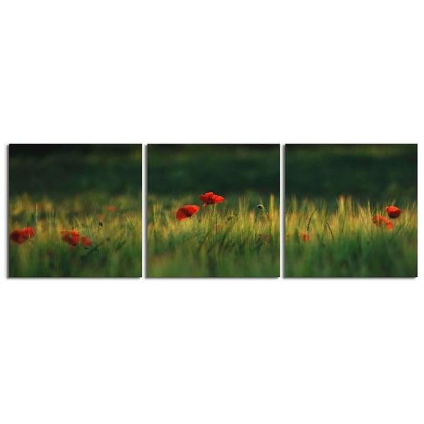 "Elementem Photography: ""Amapolas"" Photography Print 3-Panel Panoramic Wall Art"