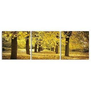 "Elementem Photography: ""Autumn Leaves"" Photography Print 3-Panel Panoramic Wall Art"