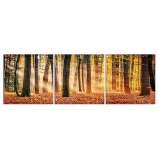 """Elementem Photography: """"Autumn Sunset"""" Photography Print 3-Panel Panoramic Wall Art"""
