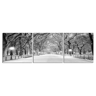 """Elementem Photography: """"Central Park (Winter)"""" Photography Print 3-Panel Panoramic Wall Art"""