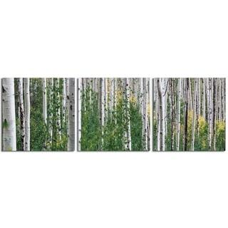 """Elementem Photography: """"Green Fauna"""" Photography Print 3-Panel Panoramic Wall Art"""