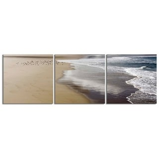 "Elementem Photography: ""Ocean Foam and Birds"" Photography Print 3-Panel Panoramic Wall Art"