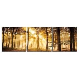 "Elementem Photography: ""Sunrise Autumn Trees"" Photography Print 3-Panel Panoramic Wall Art"