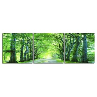 "Elementem Photography: ""Sunlight Forest"" Photography Print 3-Panel Panoramic Wall Art"