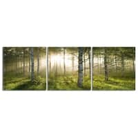"Elementem Photography: ""Enchanted Forest"" Photography Print 3-Panel Panoramic Wall Art"