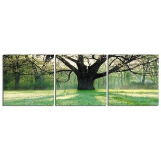 """Elementem Photography: """"Sunny Day at the Park"""" Photography Print 3-Panel Panoramic Wall Art"""