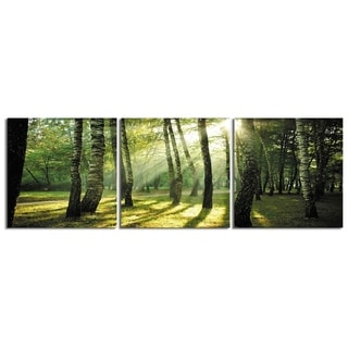 "Elementem Photography: ""Trees at Sunset"" Photography Print 3-Panel Panoramic Wall Art"