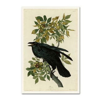 Audubon 'Ravenplate 101' Canvas Art