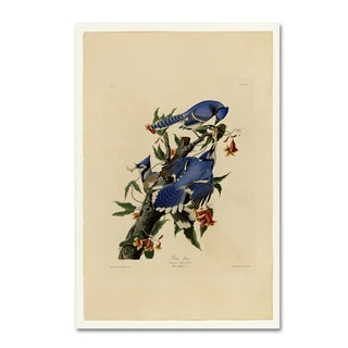 Audubon 'Blue Jayplate 102' Canvas Art