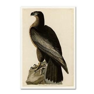 Audubon 'Bird Of Washingtonplate 11' Canvas Art