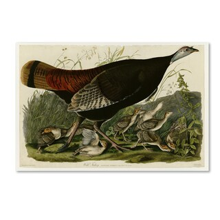 Audubon 'Wild Turkeyplate 6' Canvas Art