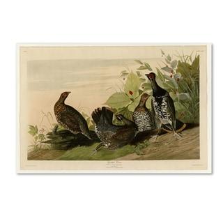 Audubon 'Spotted Grouseplate 176' Canvas Art