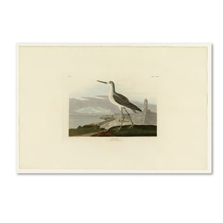 Audubon 'Greenshankplate 269' Canvas Art