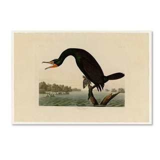 Audubon 'Florida Cormorantplate 252' Canvas Art