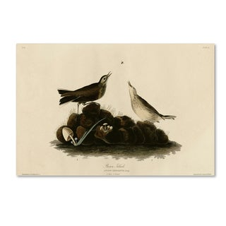 Audubon 'Brown Titlarkplate 10' Canvas Art