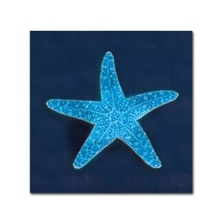 Sue Schlabach 'Cyanotype Sea III' Canvas Art