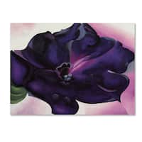 Georgia O'Keefe 'Petunia' Canvas Art