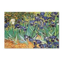 Vincent van Gogh 'Iris Garden' Canvas Art