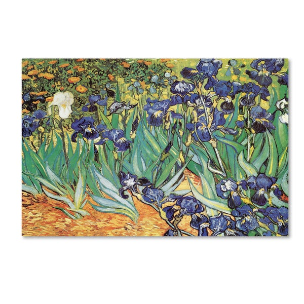 Vincent van Gogh 'Iris Garden' Canvas Art