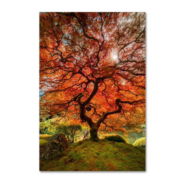 Moises Levy 'The Tree Vertical' Canvas Art