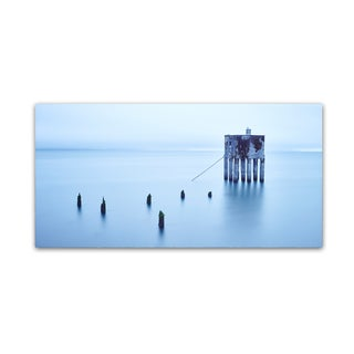 Moises Levy 'My Pet Panoramic' Canvas Art