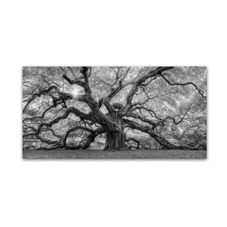 Moises Levy 'The Tree 1 BW' Canvas Art