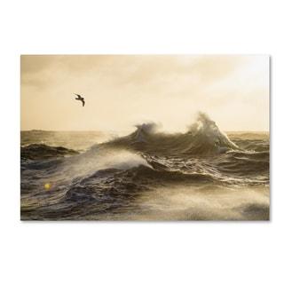 Justin Hofman 'The Formidable Drake Passage' Canvas Art
