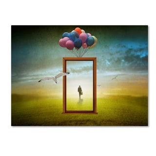 Ben Goossens 'Changing Views' Canvas Art