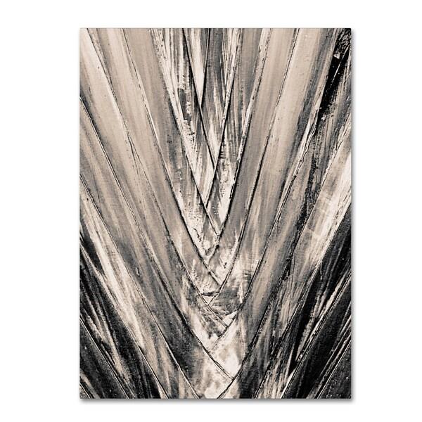 Patty Tuggle 'Sepia Palm' Canvas Art