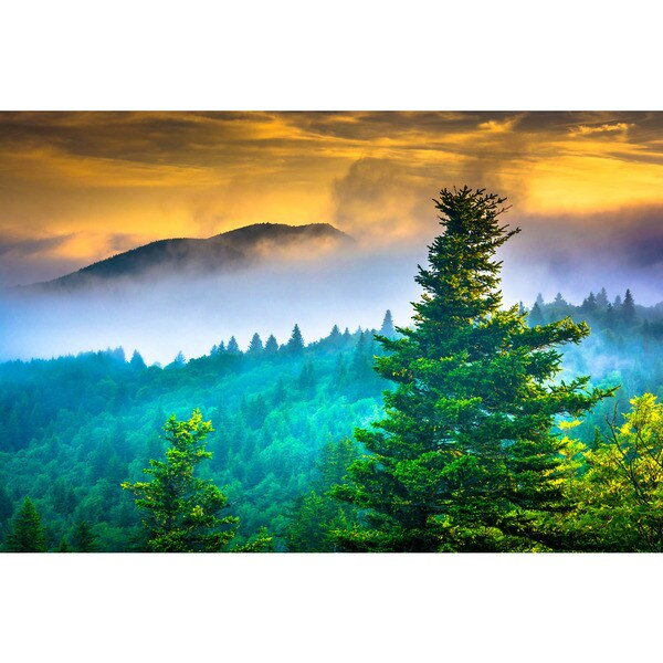 Noir Gallery Foggy Sunrise on the Blue Ridge Parkway in North Carolina Photo Print on Metal.
