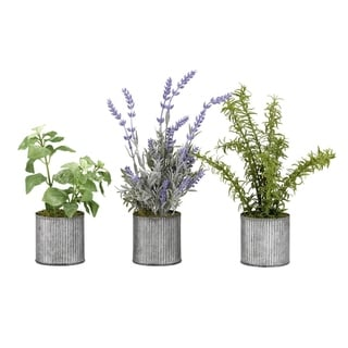 D&W Silks Basil, Lavender and Springeri in Tin Planters (Set of 3)