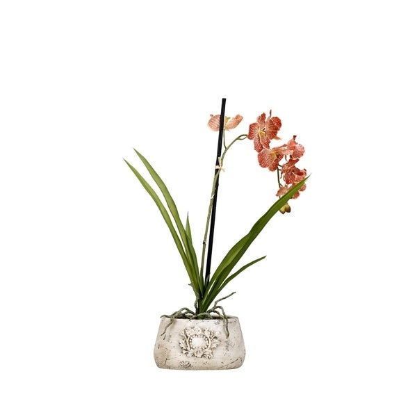 D&W Silks Red/Cream Vanda Orchid in Oval Ceramic Planter