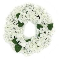 "22"" Decorative Cream and Green Artificial Floral Hydrangea Wreath - Unlit"