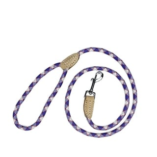 4' Patriotic Red White and Blue Durable Woven Nylon Dog Leash - Medium