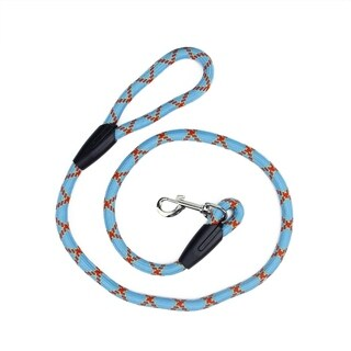 4' Sky Blue Red and Yellow Durable Woven Nylon Dog Leash - Standard